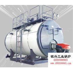 免年检燃煤蒸汽锅炉_佳木斯燃煤蒸汽锅炉_蒸汽炉图片