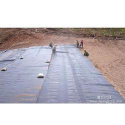 土工膜,土工膜生产厂家,瑞亨建材专业生产土工膜图片