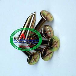【株洲市5公分测钉】,5公分测钉,武汉赛维图片