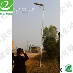 新农村建设道路照明灯图片
