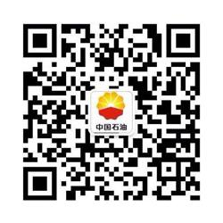国标柴油大型-国标柴油广州国标柴油图片