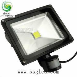20瓦LED户外感应招牌灯图片