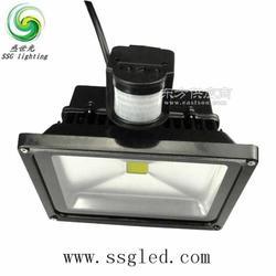 盛世光30瓦LED感应泛光灯图片