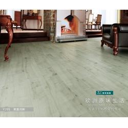 强化地板、进口地板品牌、强化地板哪家品牌好图片