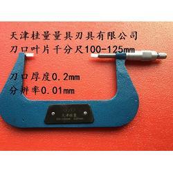 非标卡尺,桂量量具专业定制,泰安非标卡尺图片