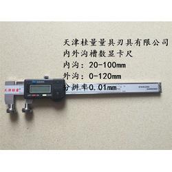 北京异形卡尺-桂量量具-异形卡尺图片