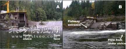 鱼道声学监测系统/鱼道声学遥测系统/鱼道监测系统