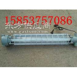 全国最优DGS20127Y矿用隔爆型荧光灯图片