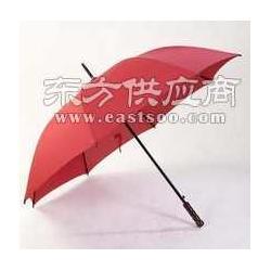 广告伞厂家定做雨伞广告礼品伞图片