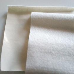 土工膜专业施工团队 【土工膜应用】 土工膜图片
