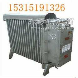 隔爆型RB-2000/127V电热取暖器图片