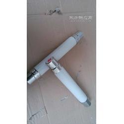 XRNT-10/2高压熔断器图片