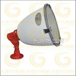 CXTG68/228节能灯 高效节能长寿灯具CXTG68图片