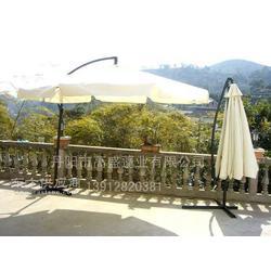 高盛蓬业提供香蕉伞、边柱伞、木质伞、休闲伞,款式多,价位好图片