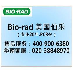 伯乐-BIORAD进口-深圳伯乐PCR仪售后服务热线图片