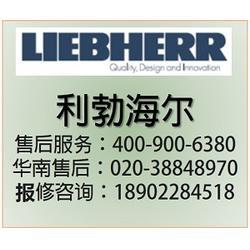 全球冷藏保鲜专家 利勃海尔售后-广州花都利勃海尔-经典售后图片