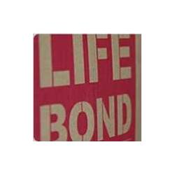 LIFE BONDES-232铝箔分层粘着剂图片