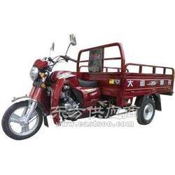 大运150三轮摩托车专卖图片