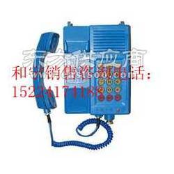 供应KTH129矿用自动电话机防爆电话机图片