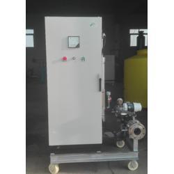 果蔬 臭氧水处理-中通臭氧(在线咨询)秦皇岛臭氧水处理图片