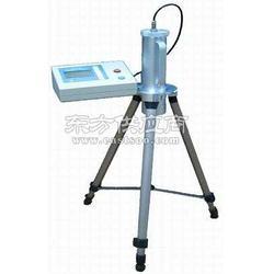 JB4010型环境监测用-剂量率仪图片