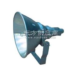 NTC9210防震型投光灯NTC9210-J250W图片