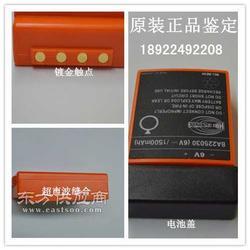 BA225030 6V 1500MAH bengc 泵车遥控器电池供应图片