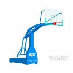 篮球架选鲸王体育,户外用品图片