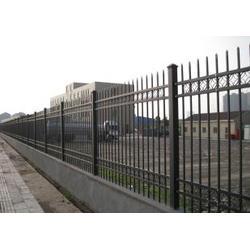 园林铁艺护栏,鼎鑫营顺(在线咨询),德州铁艺护栏图片