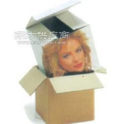包装样本设计包装样本设计报价图片