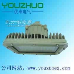 核电站专用LED防爆灯 70W/60W/GHDM260图片