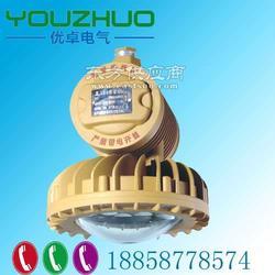 BLD230-20xbld230-40wBLD230-LED防爆灯图片