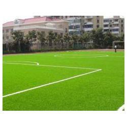 五家渠人造草坪-铺设人造草坪-强臣体育人造草坪图片