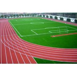 【临沂塑胶跑道施工】、混合型塑胶跑道施工、强臣体育图片