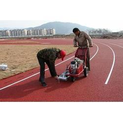 【聊城塑胶跑道】,混合型塑胶跑道,强臣体育图片