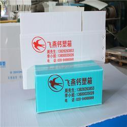 飞燕钙塑箱 飞燕塑胶制品 飞燕钙塑箱重量图片