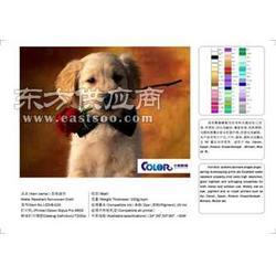 弱溶劑化纖油畫布 600D弱溶劑油畫布圖片