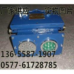矿用绞车载人声光报警器KXB127-127V图片