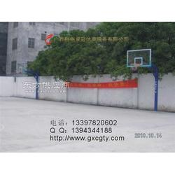 透明板球场篮球架厂家图片