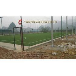 梧州人工草皮足球场图片