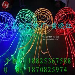 LED装饰灯节日彩灯LED防水灯串图片