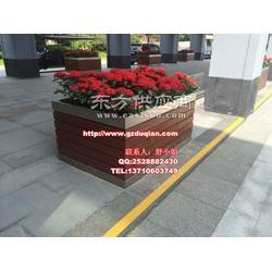 翁源盆栽花箱、新丰户外流动花箱图片
