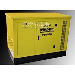 YT20REG 液化气发电机图片