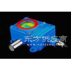 RBT-6000-FX 煤气报警器图片