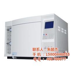 高纯气体气相色谱仪-高纯气体气相色谱仪厂家-上海奥嵩图片