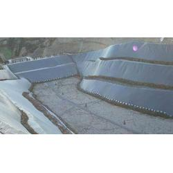 防水板厂家-防水板-中瑞土工材料图片