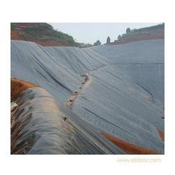 HDPE土工膜施工,HDPE土工膜,中瑞土工材料图片