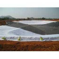 吴忠HDPE土工膜|中瑞土工材料|HDPE土工膜加筋图片