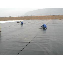 HDPE土工膜、HDPE土工膜廠家、中瑞土工材料圖片