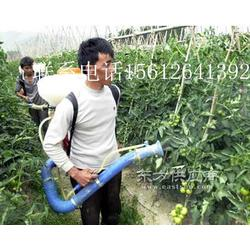 果园喷雾器机动高压二冲喷雾机打药机 杀虫机消毒机图片